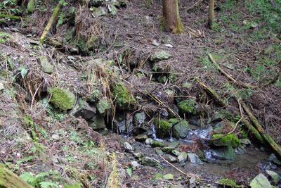 京都市街東部・如意ヶ嶽山中にて発見した、巨大な土塁関門の前方(下流側)に付属する石積堰堤の廃墟