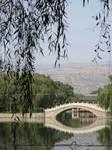 柳葉越しに見える、池と石橋ある中国庭園風の天水馬包泉公園と頂まで耕地化された黄土山地