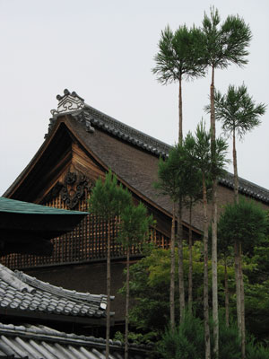 来田猛写真展が開かれた京都嵯峨野・大覚寺宸殿の屋根