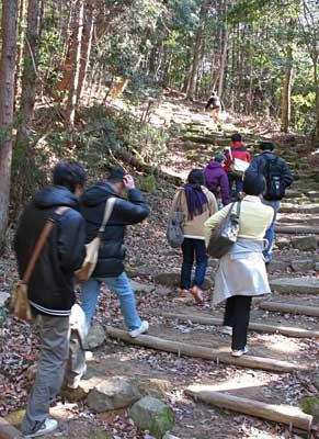 戦国時代の観音寺城の大手道跡とみられる、比較的整備された石段・木段の急登をゆく城会一行