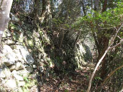 観音寺城の頂上方面の郭前に現れた古い石組防壁と犬走的通路
