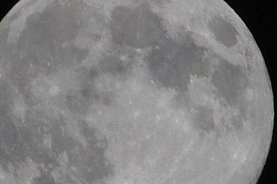 月会「賀茂川(鴨川)月見,荒神橋,飛石,中秋,十五夜,観月,お月見,満月」
