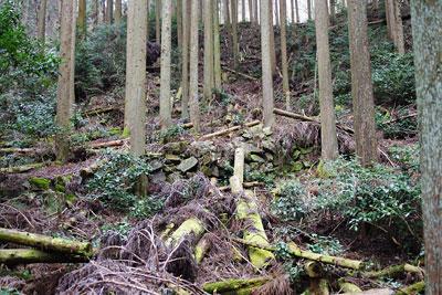 京都市東部の如意ヶ嶽(大文字山)山中にある如意寺本堂推定地直下に残る石積み古道