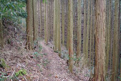 京都市東部の如意ヶ嶽(大文字山)山中にある如意寺東門独自推定地から東へ続く古道