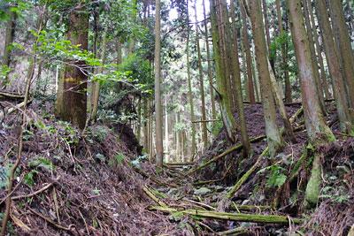 京都市東部の如意ヶ嶽(大文字山)山中で見つけた、石垣も備えた古い土塁関門