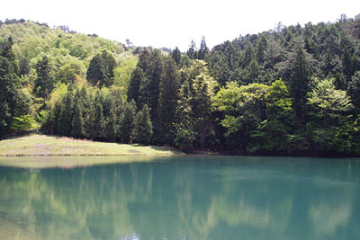 峠会「寒谷越の道沿いにある飛騨ノ池,岩倉と大原を結ぶ古道」