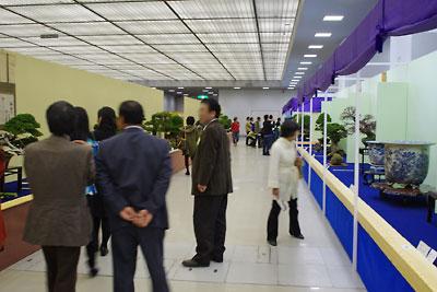 第32回日本盆栽大観展の会場風景,BONSAI Exhibition,kyoto,京都岡崎みやこめっせにて