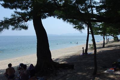 湖会「琵琶湖,湖水浴,避暑,納涼,湖西,近江舞子,雄松崎,水泳,水遊び」