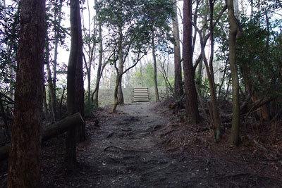 中世の山城、如意ヶ嶽城(大文字城)の登城路でもある、東山縦走路に造られた新しい林道の土壇