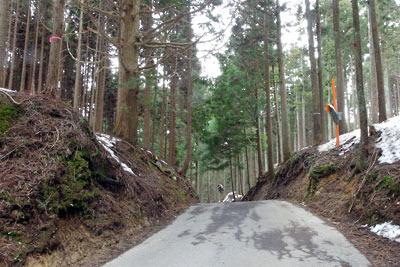 意外と残雪が少ない、京都市街北部・北山山中の百井峠