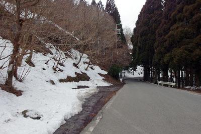 残雪あるも意外と温暖な、京都市街北部・北山山中の花脊峠