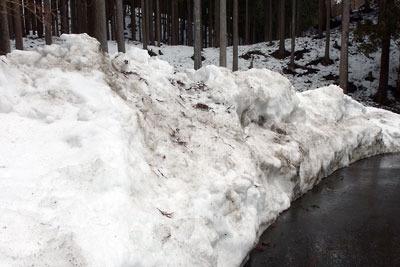 京都市街北部・北山山中の花脊峠北下方の路肩に多量に残る除雪の雪