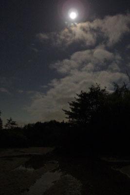 山会「太神山野営,キャンプ,沢水の子供プール,砂上の水面,月夜の砂原と水面」