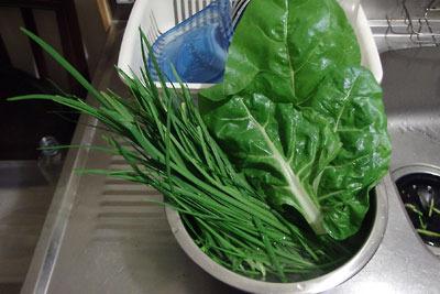 手工「美味い菜,便利菜,韮」