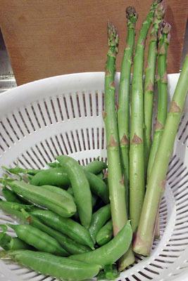 手工「北海道自家製アスパラガス,京都市菜園自家製豌豆,エンドウ」
