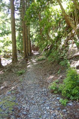 山会「京都北山廃村八丁行,旧八丁集落を貫く整備された道跡」