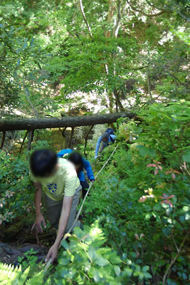 山会「京都北山廃村八丁行,刑部谷の壊れた桟道を慎重に通過」