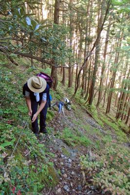 山会「京都北山廃村八丁行,奈良谷から刑部滝を巻く道を登る」