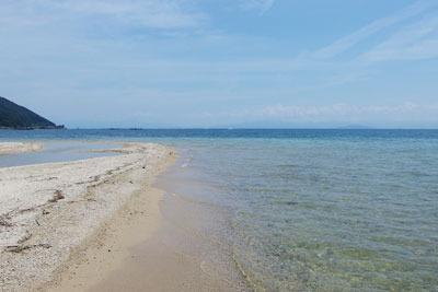 告知「湖会,琵琶湖,湖水浴,水浴,水泳,琵琶湖の河口と砂浜」