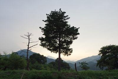 夕照に馴染む、滋賀県琵琶湖西岸の木々と山々
