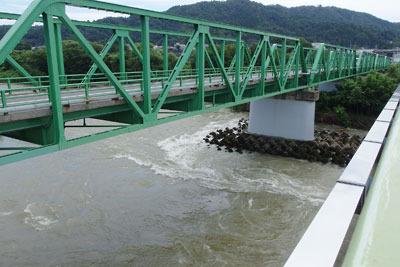 橋梁下に前夜の大雨の濁流を見せる、えち鉄松岡駅付近五松橋下の九頭竜川
