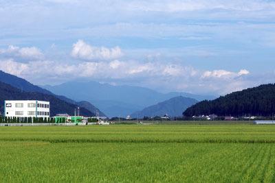 田圃広がる福井平野の東端から見た、東方内陸の勝山方面と巨大な経ヶ岳の山体