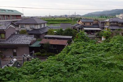 福井平野東部・旧松岡城本丸跡地から見た、九頭竜川河岸方面の家並と、河岸と城址との高低差