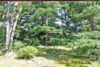 福井県東部の旧大野城下の武家屋敷「田村家」奥庭に残る、現存唯一の大野城外堀土塁(土居)を利用した築山