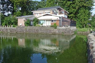 福井県東部・旧大野城下寺町付近にある、戦国期の亥山城の堀跡と伝わる日吉神社の池