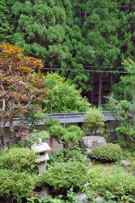 京都市街北部の高所集落「芹生」の宿庭と、借景の北山杉の植林山