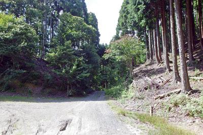京都市街北部の高所集落「芹生」と旧花脊峠を隔てる尾根(中央)を切り通す林道