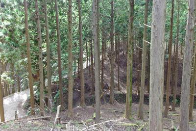 京都市街北部の高所集落「芹生」東方の、旧花背峠の西・天狗杉側から見た旧花脊峠と芹生への分岐、そして掘り下げ前の地面の残存部
