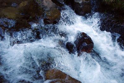 淀川水系灰屋川上流の冷えた水を山間の川筋に躍らせる、京都市街北部の高所集落「芹生」の沢
