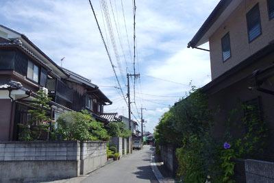 京都市街南郊にある、旧巨椋池の池中に伸びるかつての堤防道(縄手)両側に家が並ぶ東一口集落