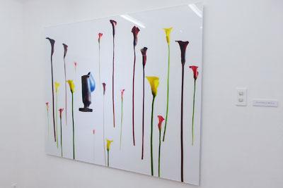大阪中心部のギャラリー「白(HAKU)」で開かれた、杉田一弥と来田猛(ころだ・たける)の生け花と写真のコラボ展「FLOWERS 2017」で展示される、ユニークで斬新な写真作品