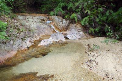 滋賀県の湖南アルプスの澄んだ沢水