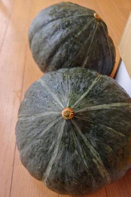 手工「北海道名物,道産かぼちゃ」