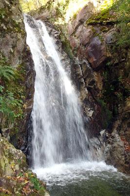 楊梅の滝の「雌滝」