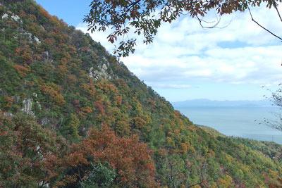 楊梅の滝の北斜面の紅葉と琵琶湖の眺め