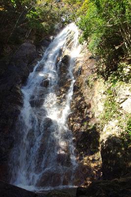 楊梅の滝「雄滝」