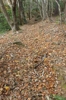 涼峠とヤケ山間の落ち葉道