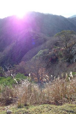 ヤケオ山稜線からみた釈迦岳