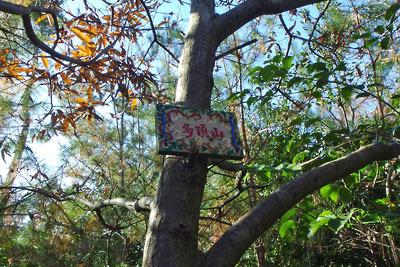 大文字山の前山「多頂山」の私製標識