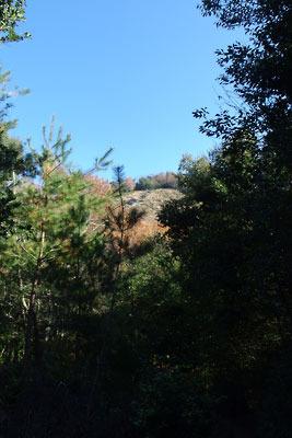 大文字山前山から見えた大文字の火床