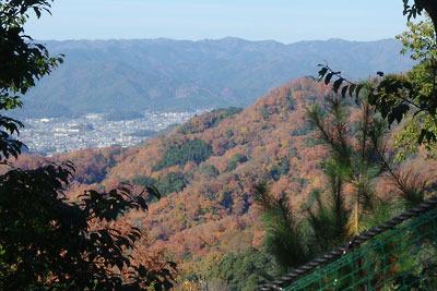大文字山山腹からみた瓜生山の紅葉