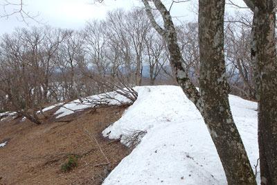 皆子山頂上地帯の残雪