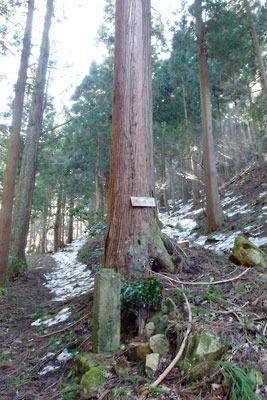 近年の登山道と古い参詣路との分岐部