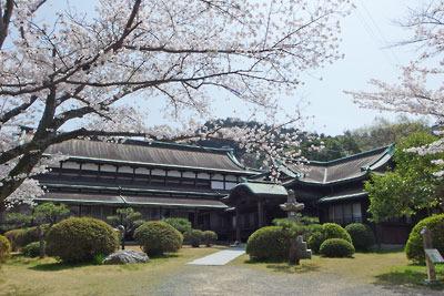 桜と琴平町公会堂