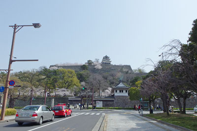 大手から見た桜咲く丸亀城
