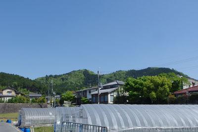 一乗寺集落から見上げた瓜生山と茶山